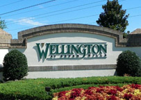 Spring Hill Communities, Wellington at Seven Hills Real Estate, Wellington at Seven Hills Homes For Sale